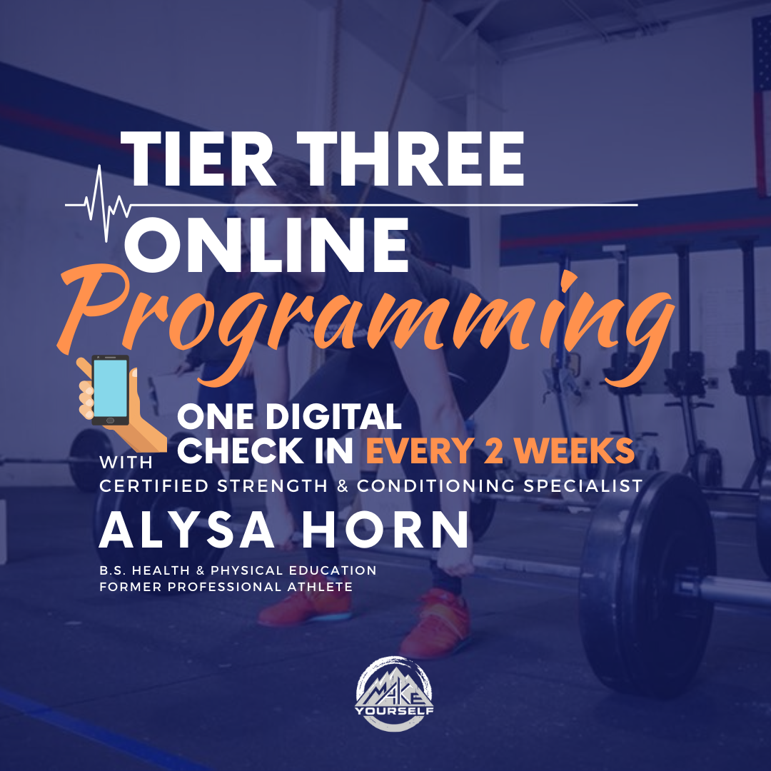Remote Coaching Tier Three: Programming + One Digital Check in Every Two Weeks