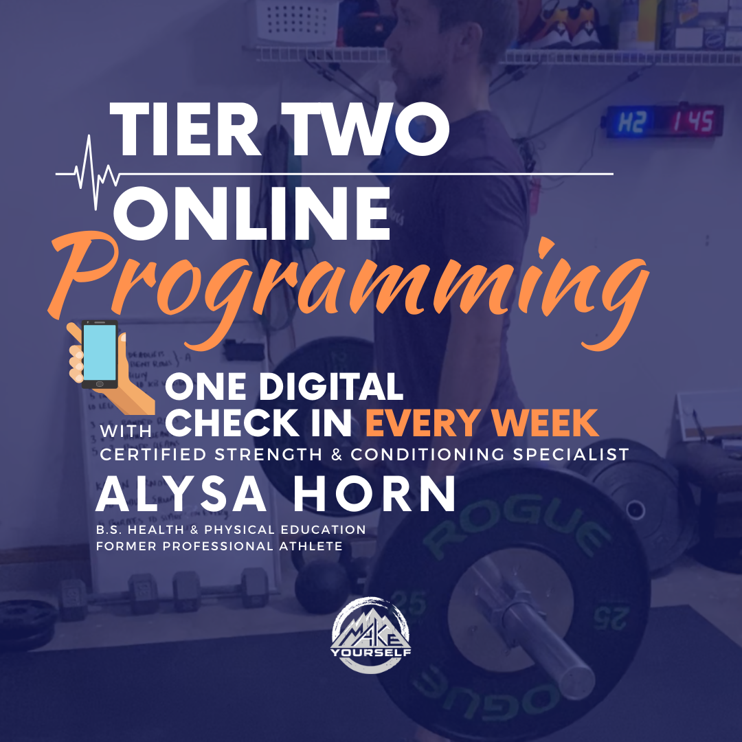 Remote Coaching Tier Two: Programming + One Digital Check in Per Month